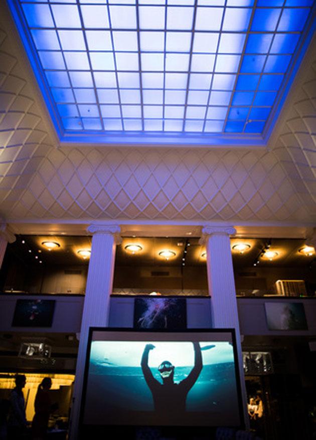 Valokuvanäyttely Underwater Dreams Restaurant Plazassa